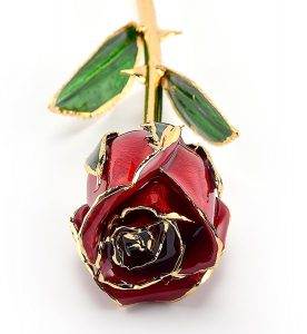 Gold Trimmed Rose
